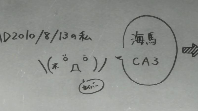 f:id:hotomaru:20190309200015j:plain