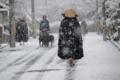 京都新聞写真コンテスト 雪降りの出逢い