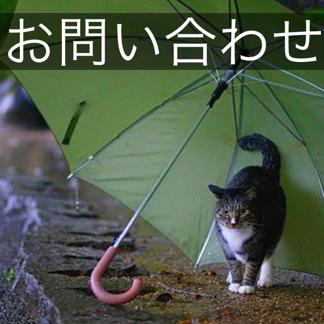 f:id:hoyashinji:20210413094014j:plain