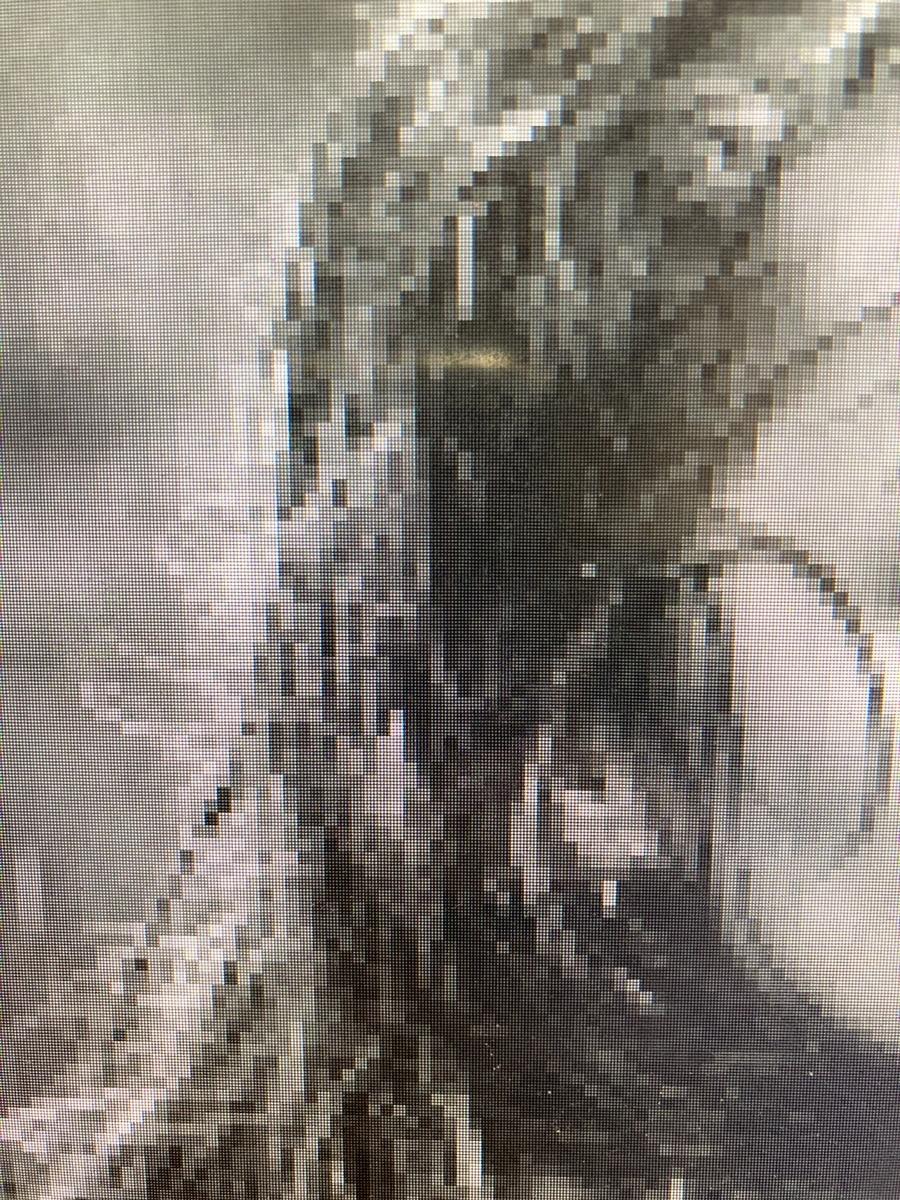 f:id:hoyashinji:20210630191009j:plain