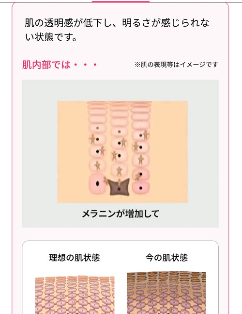 f:id:hozumi-anne:20190913123709j:plain