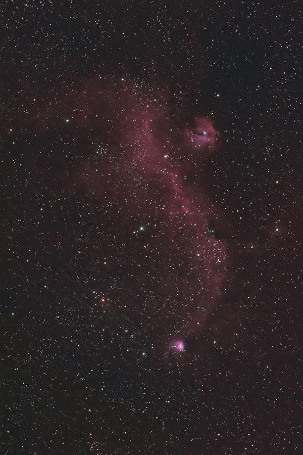 かもめ星雲(わし星雲) IC2177