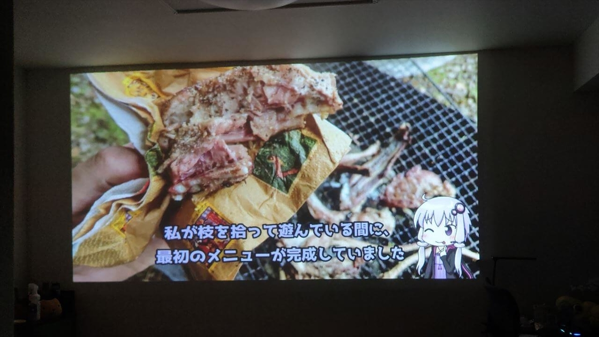 VANKYO GO300 ミニプロジェクターでYouTubeを視聴