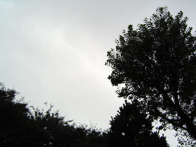 f:id:hrmoon:20090722110202j:image