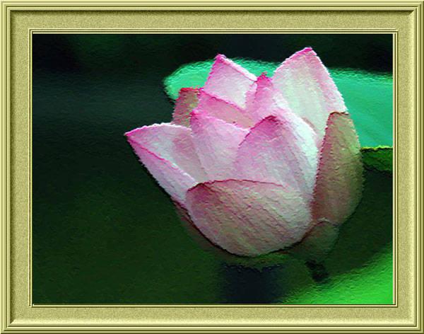 f:id:htym67:20120225161844j:image