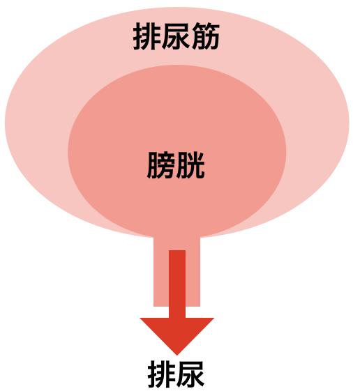 f:id:huji7:20200222214116p:plain