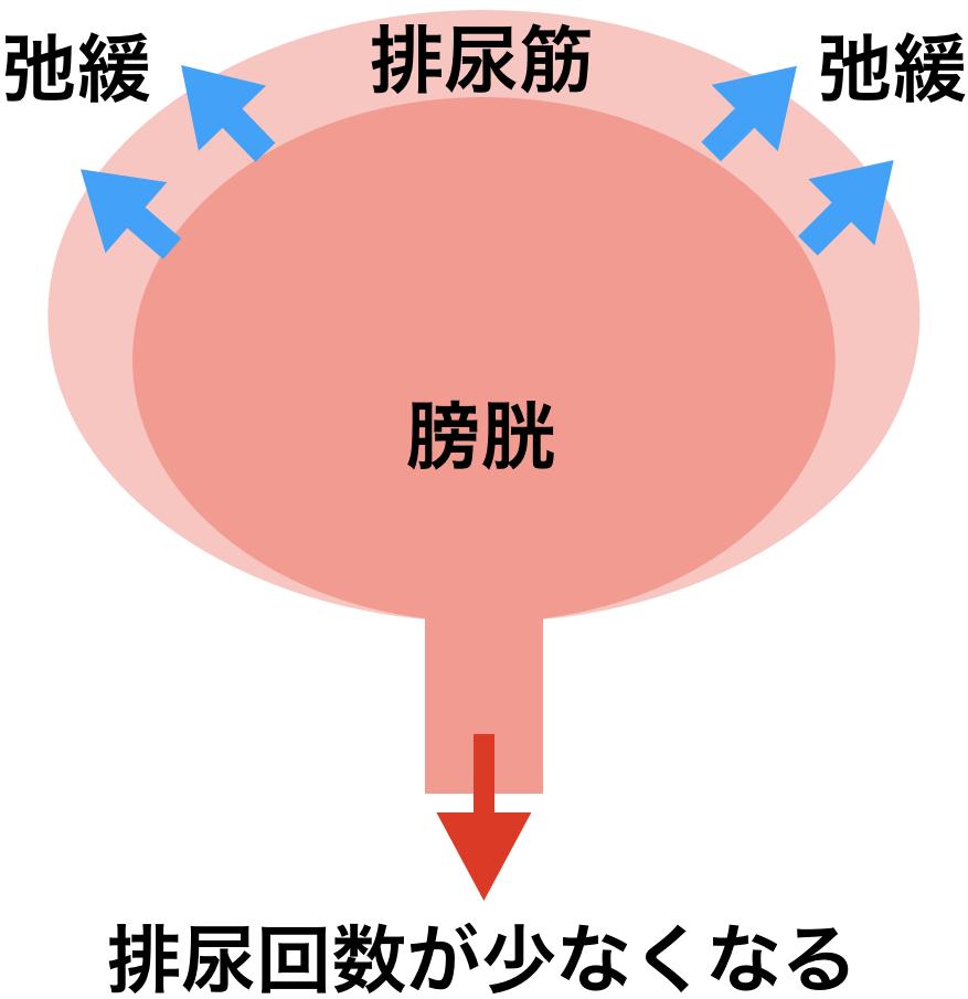 f:id:huji7:20200224180643p:plain