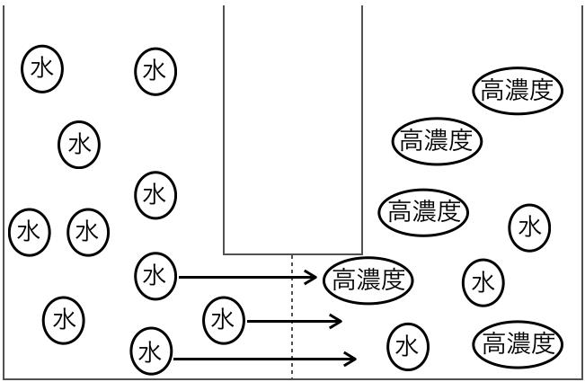 f:id:huji7:20201018203921p:plain