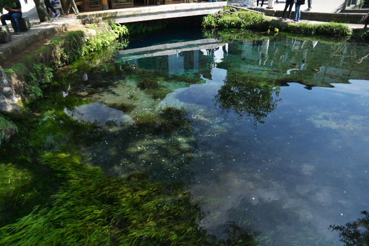 五番霊場 湧池
