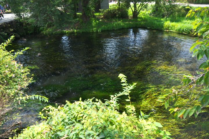 六番霊場 濁池
