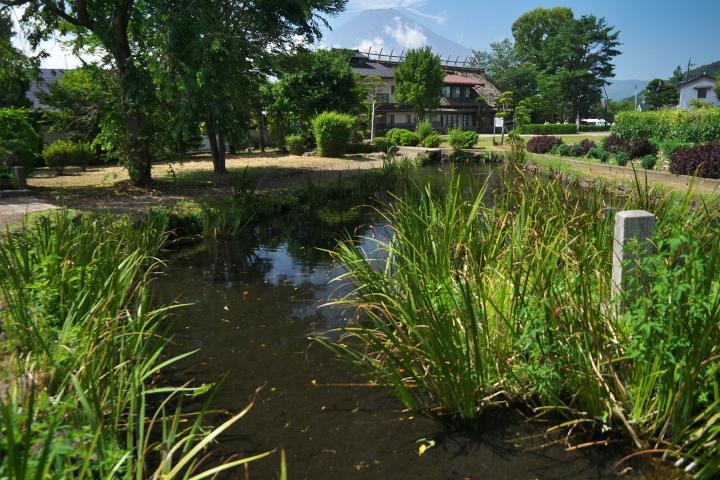 八番霊場 菖蒲池
