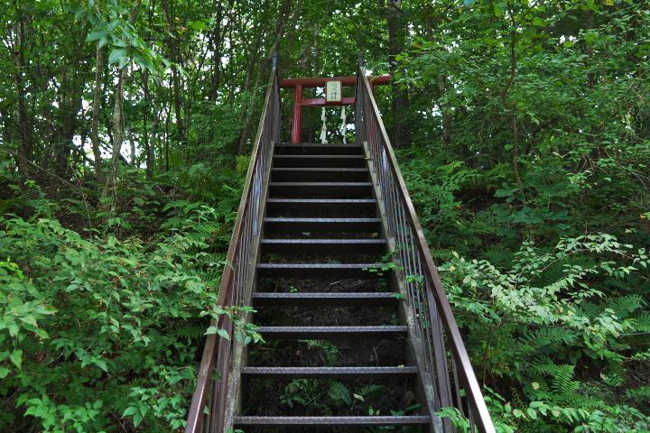 吉田胎内樹型への入口