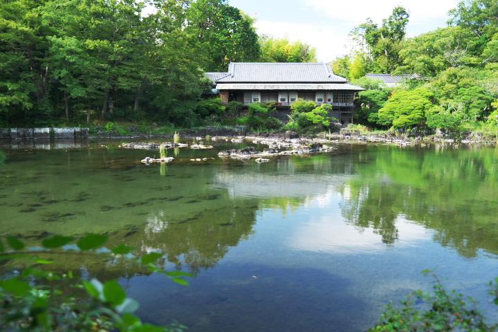 楽寿館と小浜池