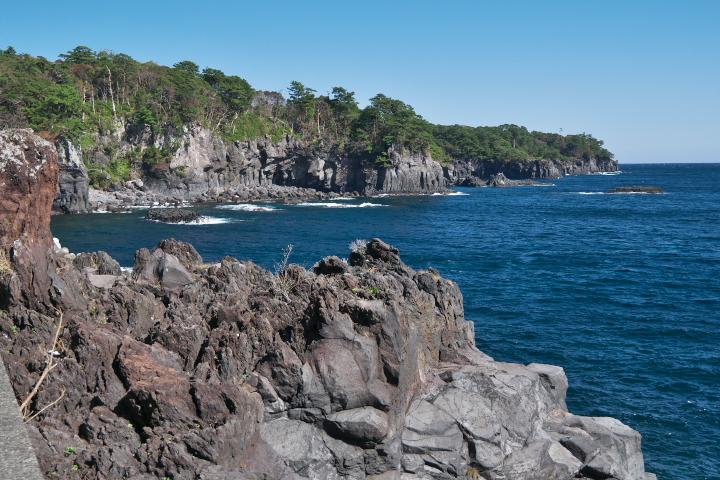 一本松展望台より城ヶ崎海岸を望む