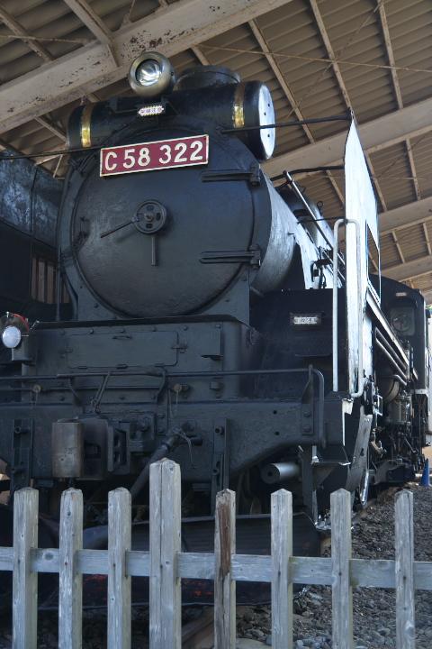 楽寿園の機関車