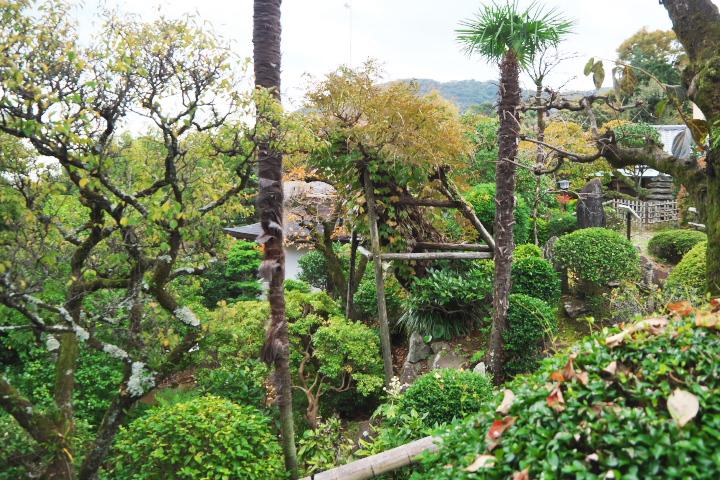 双柿舎 庭