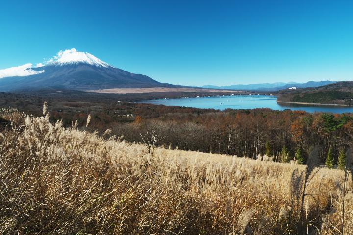 山中湖パノラマ台より