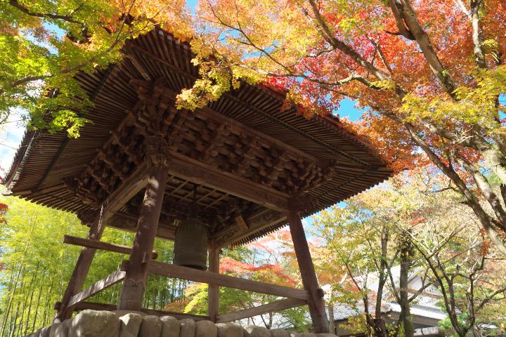 鐘楼堂と紅葉