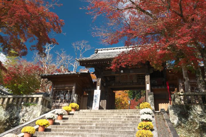 修禅寺山門