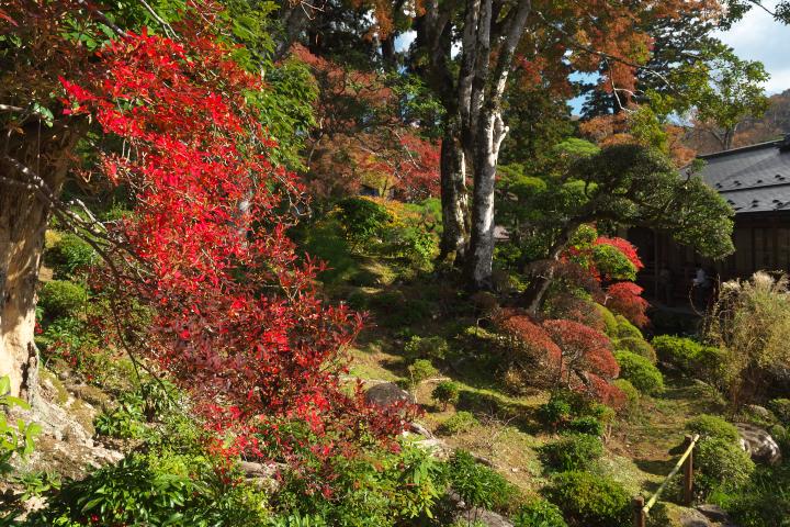 修禅寺庭園2