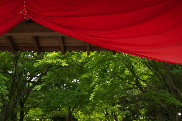 虹の郷 日本庭園の門