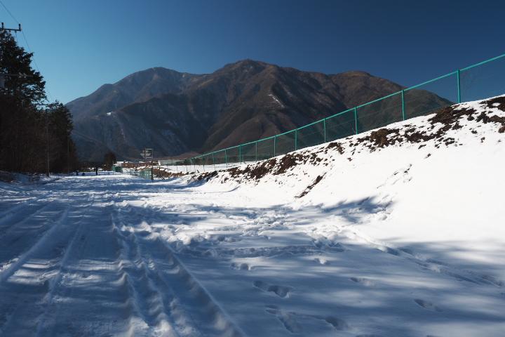 朝霧高原某所の今年の積雪