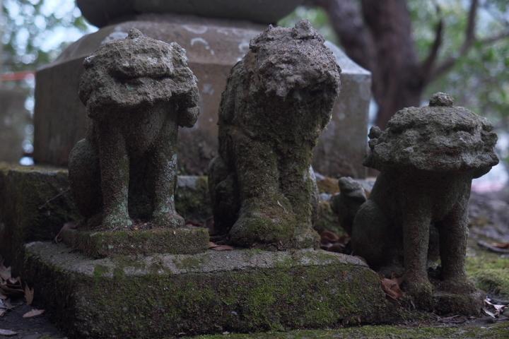 安良里港 神社の狛犬