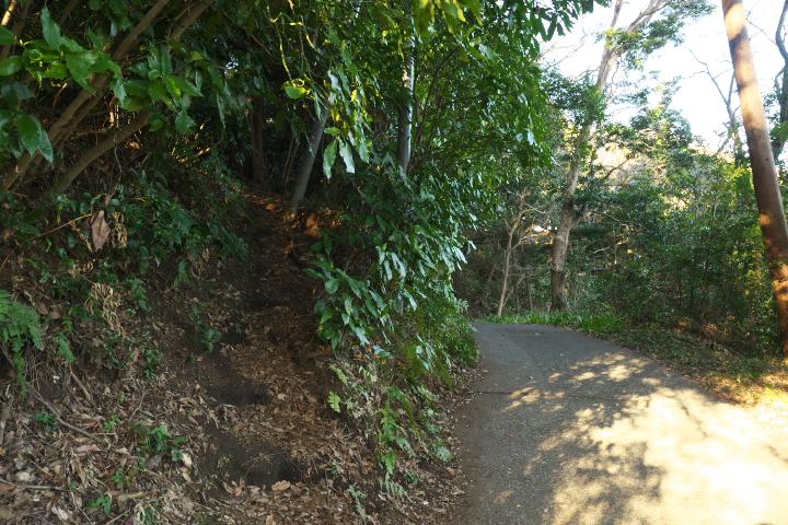 岩本山公園 山頂への近道入口