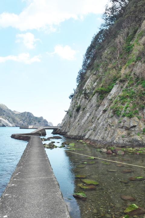 中木 トガイ浜に続く道