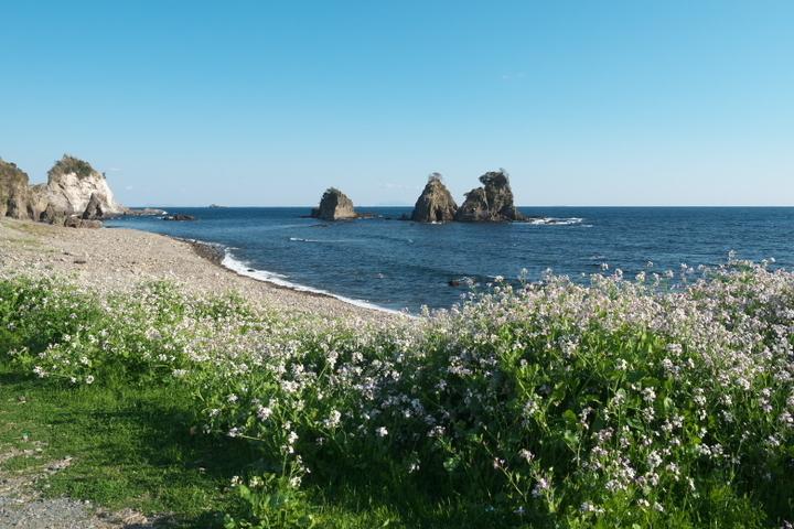 逢ヶ浜海岸