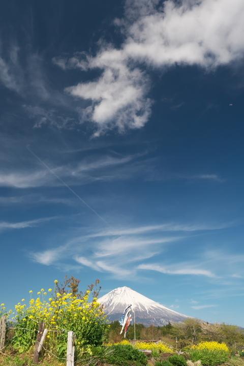 平成棚田周辺からの富士山
