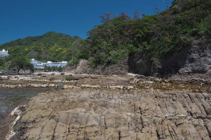 伝兵衛島の磯の柱状節理の様子