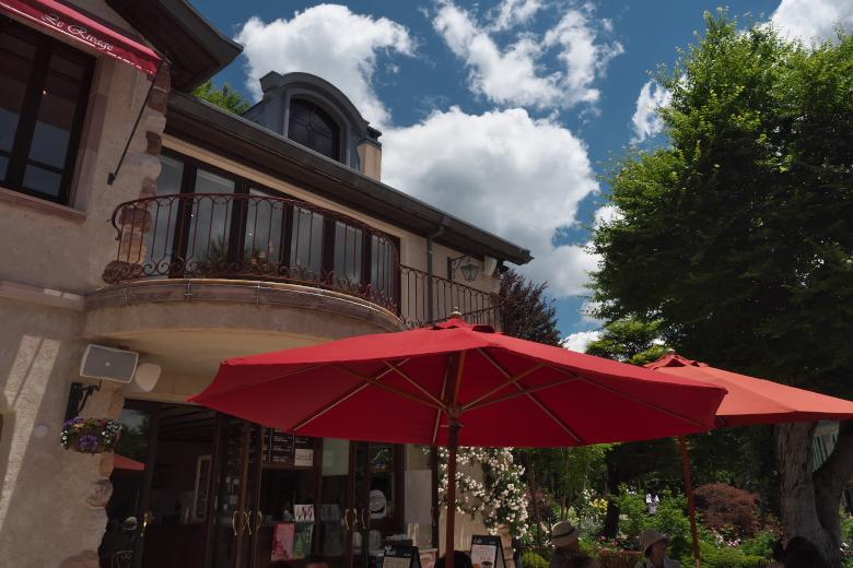 河口湖 オルゴールの森 森のレストラン