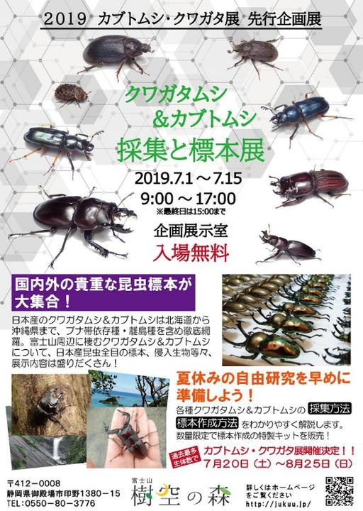 クワガタムシ&カブトムシ -採集と標本展-
