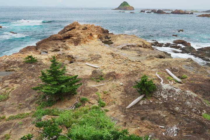 タカンバ海岸(仮2)