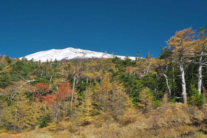 富士山5合目手前より
