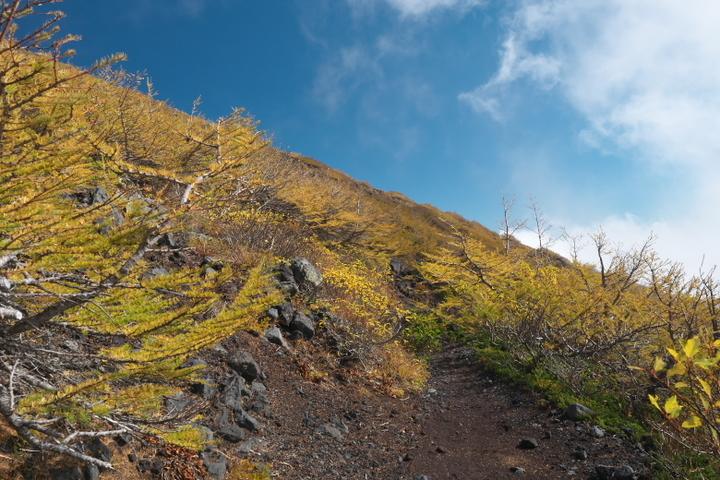 富士山 宝永山へのルート