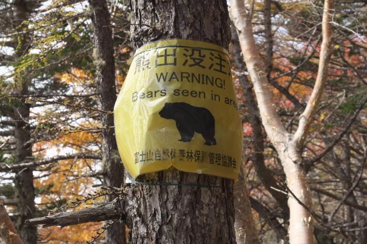 富士山 熊注意