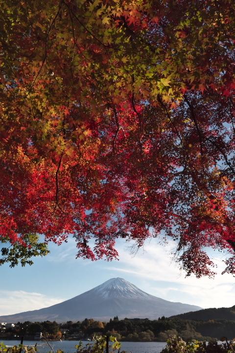 留守ヶ岩周辺からの富士山
