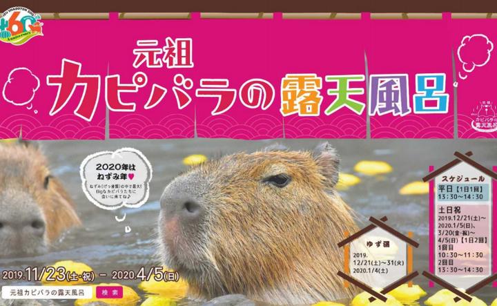 伊豆シャボテン動物公園で元祖カピバラの露天風呂