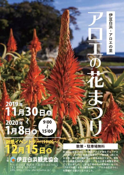 下田 アロエの花まつり