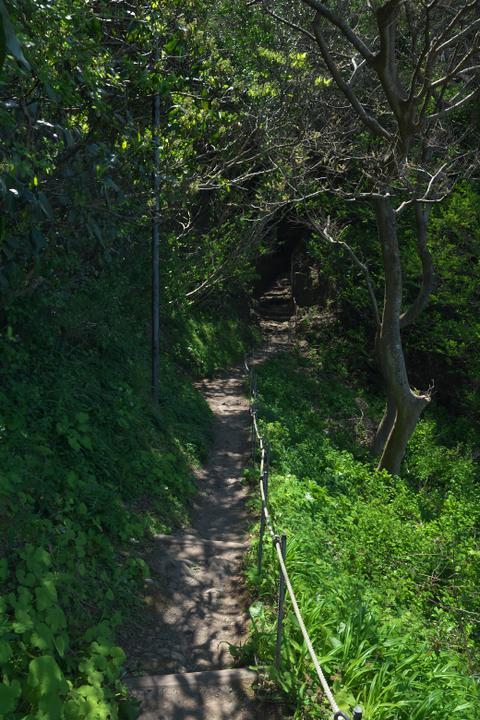 室岩洞への道