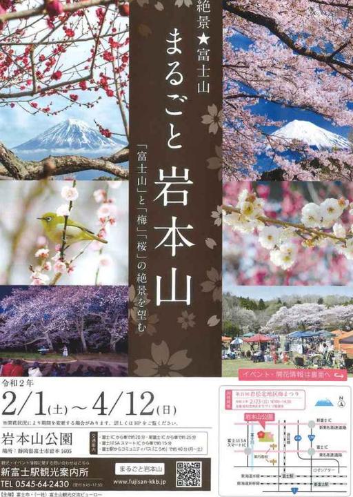 絶景☆富士山まるごと岩本山