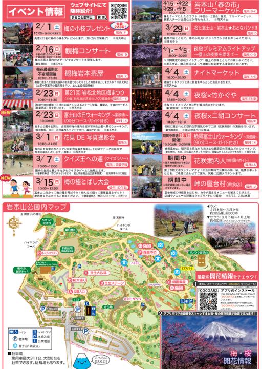 絶景☆富士山まるごと岩本山2