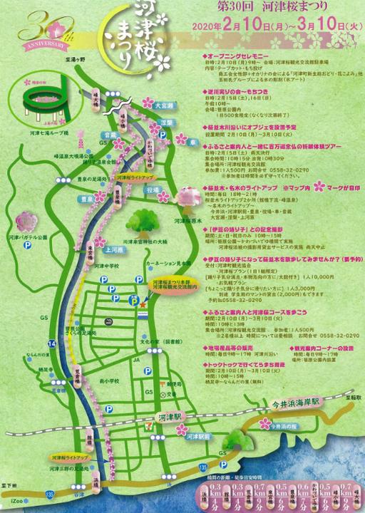 第30回河津桜まつり2