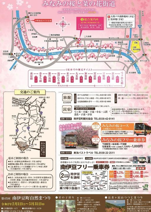 第22回みなみの桜と菜の花まつり2