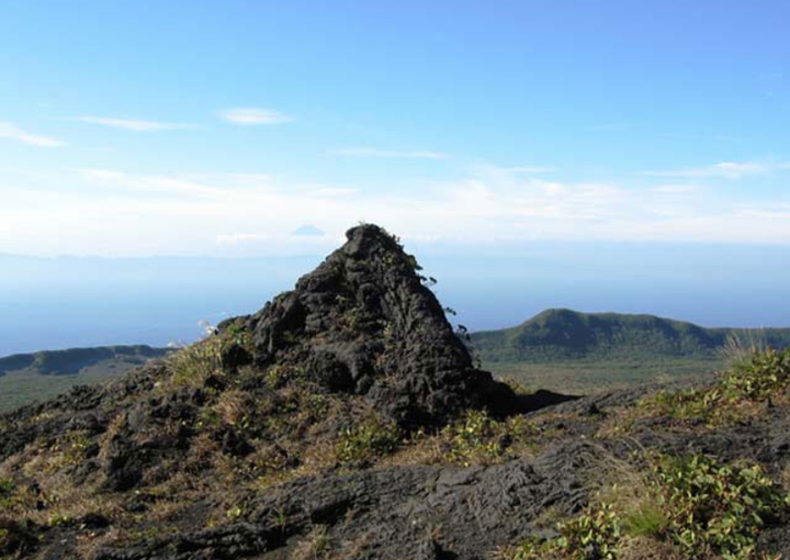 伊豆大島に見られるホルニト