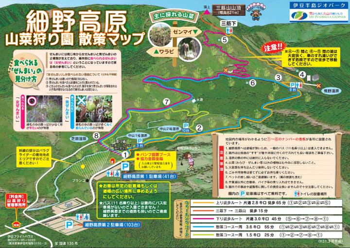 稲取細野高原山菜狩り 山菜マップ