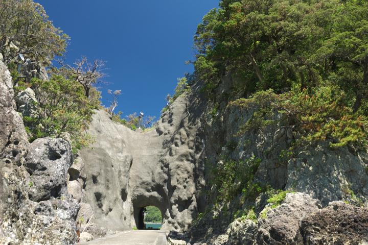 下田 犬走島 トンネル