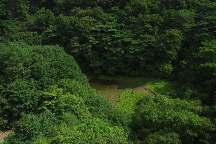 富士五湖 赤池4